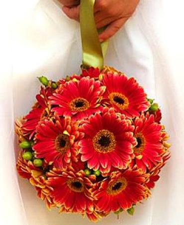Flower Girl Gerberas Ball